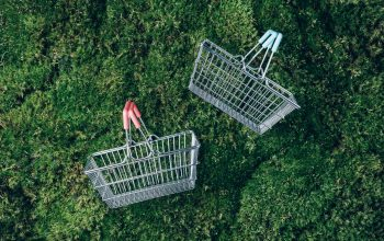 Sustainable lifestyle. Top view of supermarket shopping basket on green grass, moss background. Black friday sale, discount, shopaholism, ecology concept. Sustainable lifestyle, conscious consumption.