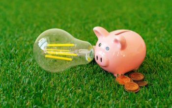 piggy-bank-with-energy-saving-lamp-on-grass-WLU84DF